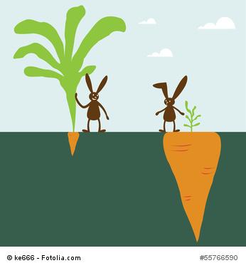 Investmentfonds lassen Sie sich nicht blenden